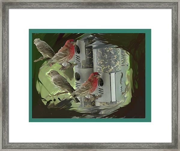 Couples Framed Print