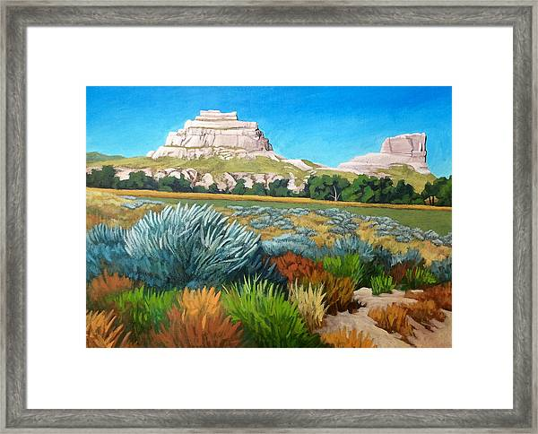 Courthouse And Jail Rocks 2 Framed Print