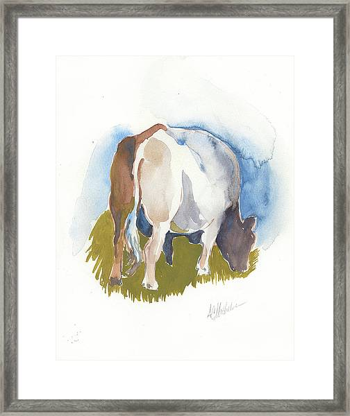 Cow I Framed Print
