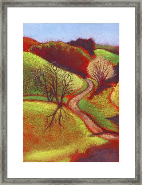Cow Pasture Wildcat Canyon Framed Print