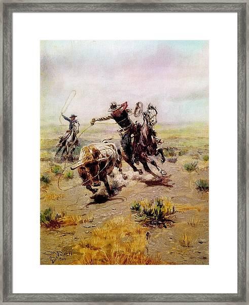 Cowboy Roping A Steer Framed Print