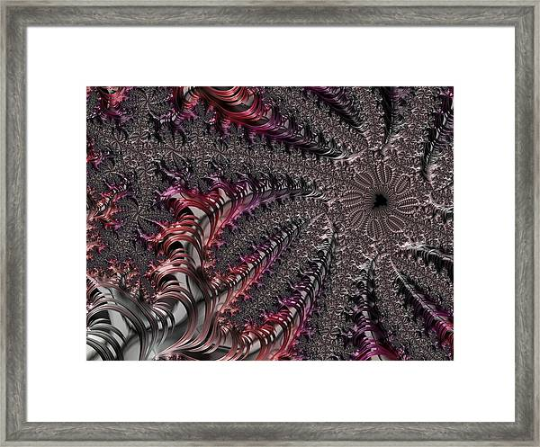 Cowry Tree Framed Print
