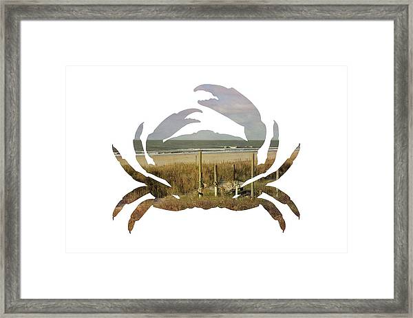 Crab Beach Framed Print