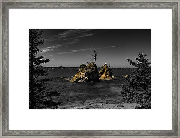 Crab Rock Framed Print
