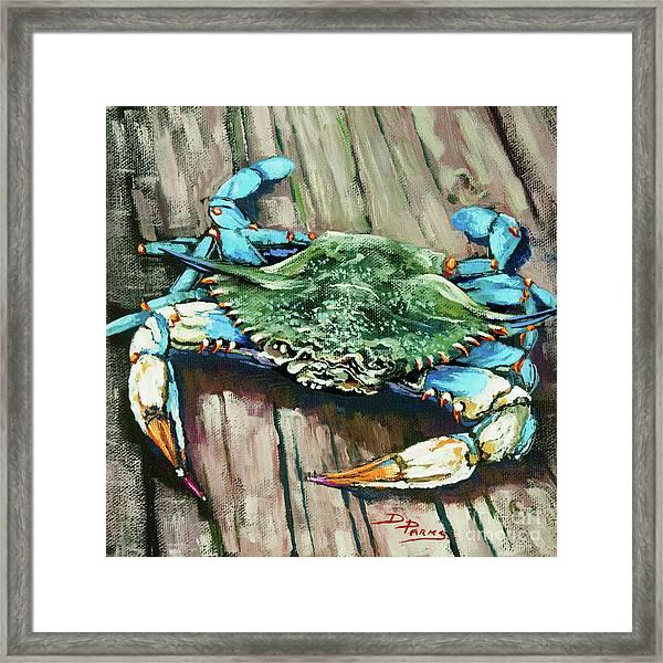 Crabby Blue Framed Print