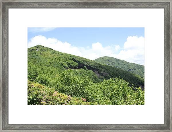 Craggy Gardens Framed Print