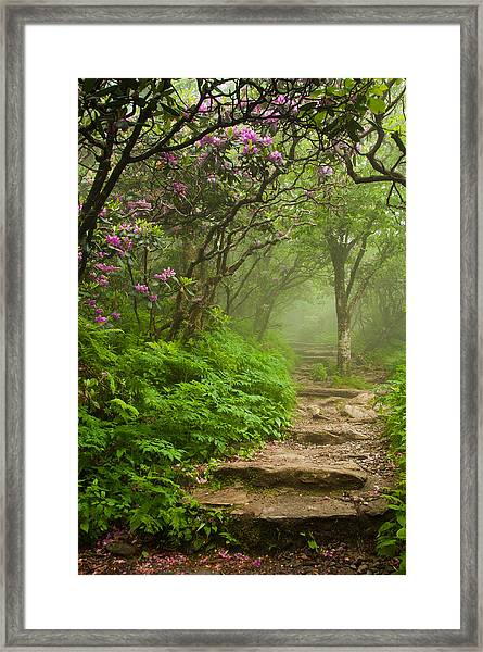 Craggy Steps Framed Print