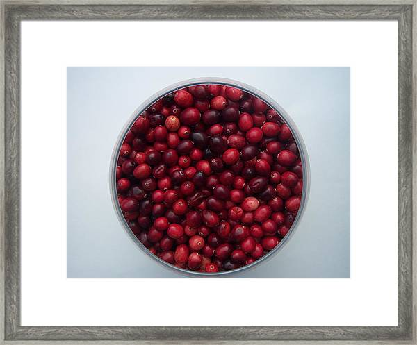 Cranberries Any One Framed Print