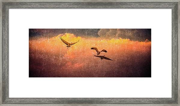 Cranes Lifting Into The Sky Framed Print