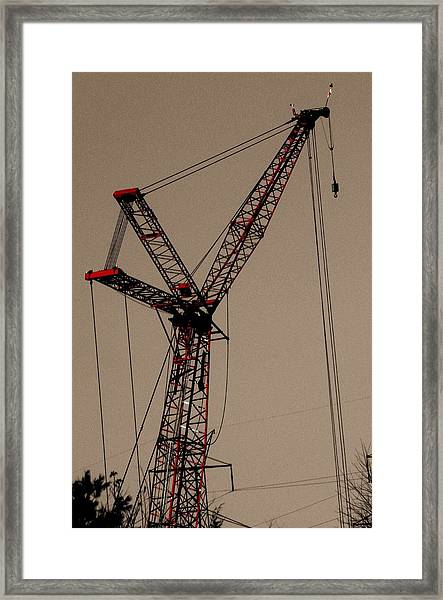 Crane's Up Framed Print