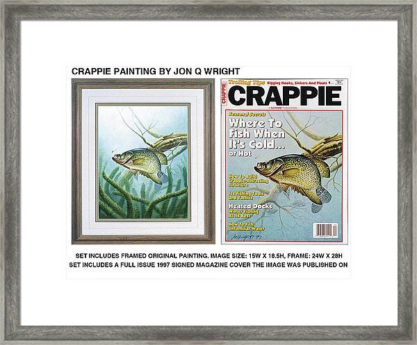 Crappie #2 Framed Print by JQ Licensing
