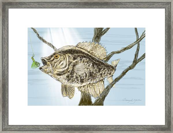 Framed Print featuring the painting Crappie Time - 2 by Barry Jones
