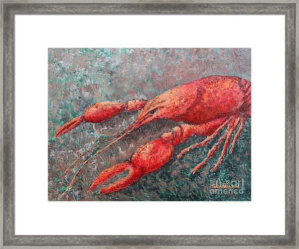 Crawfish Framed Print
