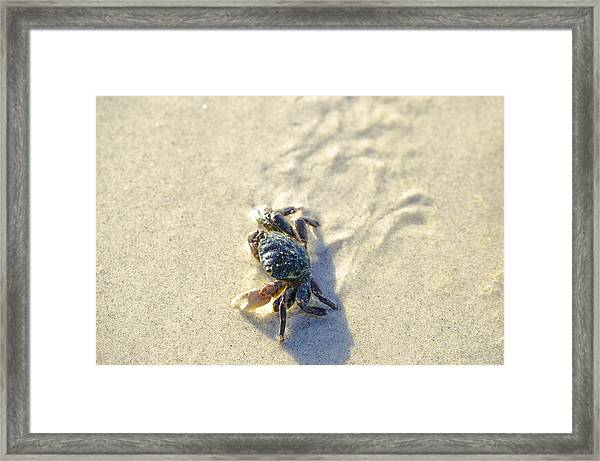 Crawling Back To You Framed Print