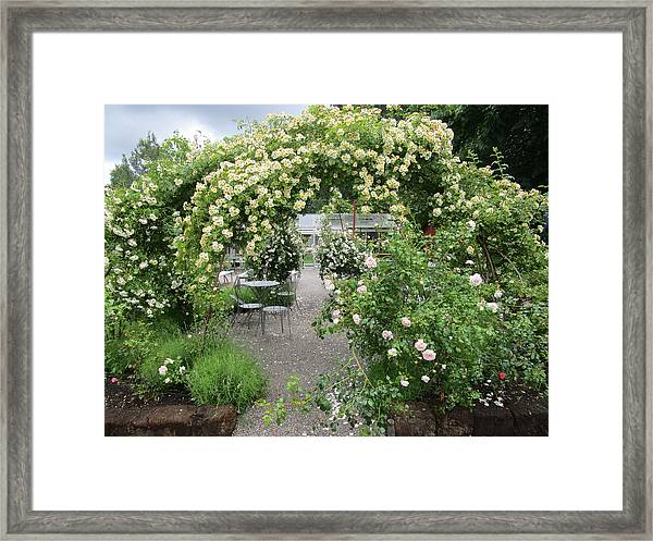 Cream-colored Roses With Your Coffee Framed Print