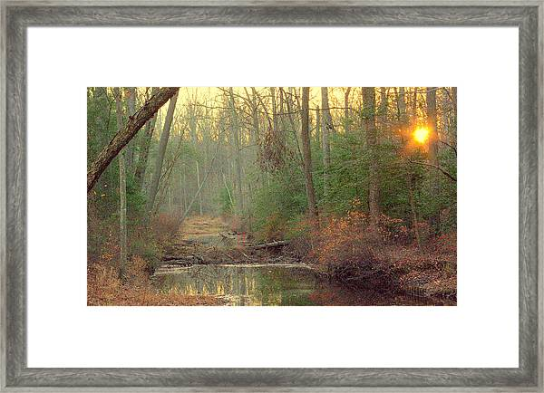 Creek Bed Framed Print