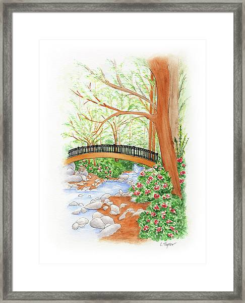 Creek Crossing Framed Print