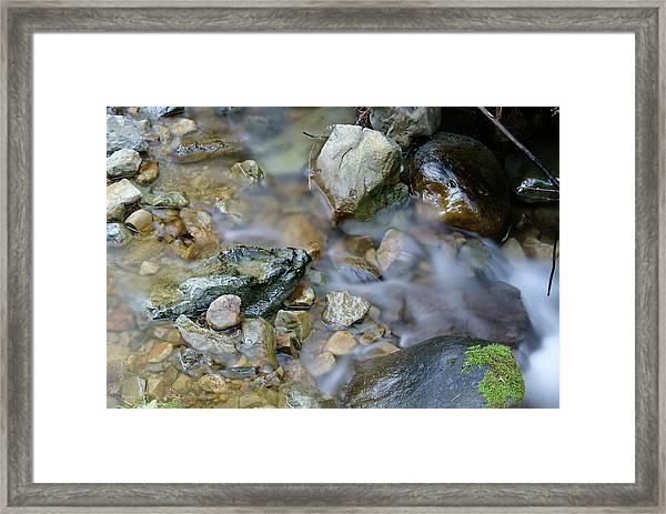 Creek On Mt Tamalpais Framed Print