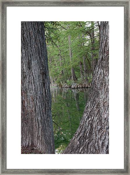 Creek Reflections Framed Print