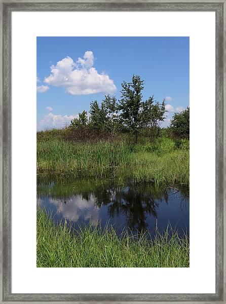 Crex Meadows Framed Print