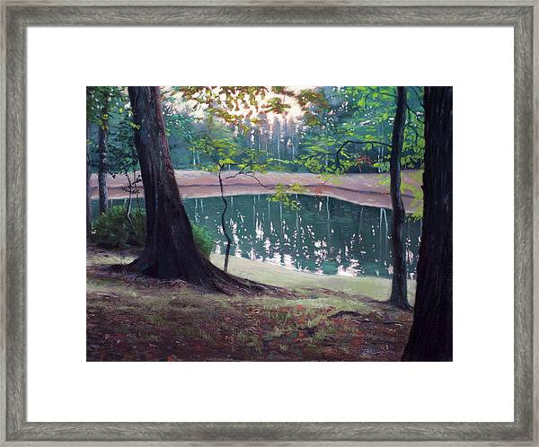 Crickets Chirping Framed Print