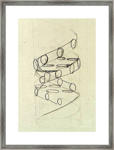 Cricks Original Dna Sketch Framed Print