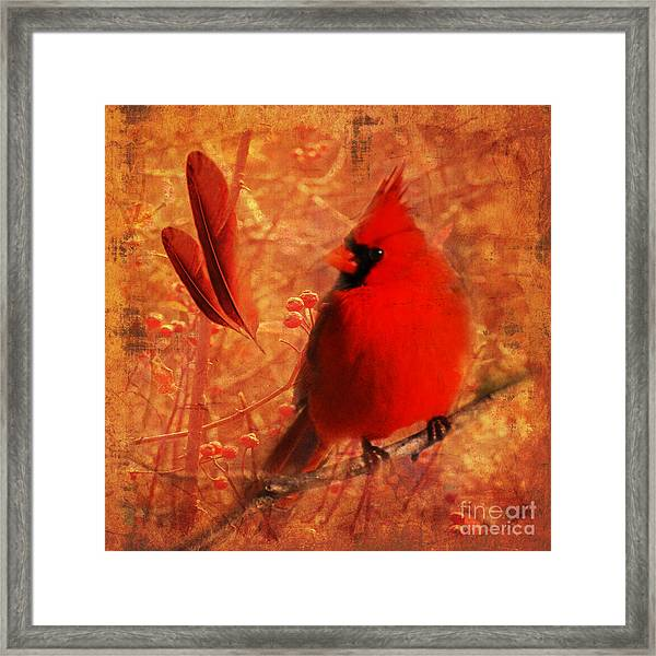 Crimson Splash 2015 Framed Print