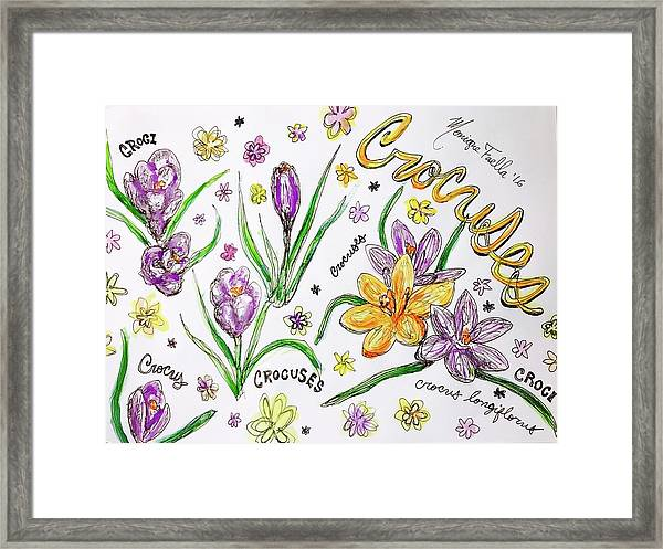 Crocuses Framed Print