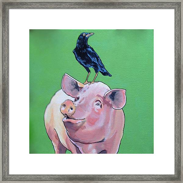 Cromwell The Crow Framed Print