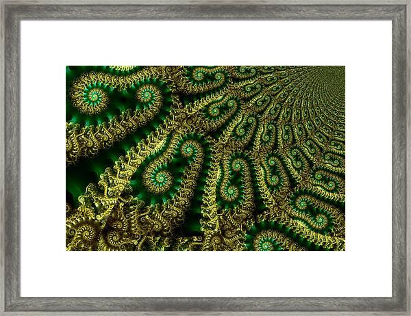 Crop Fields Framed Print