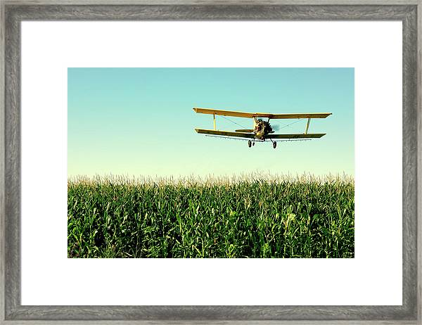 Crops Dusted Framed Print