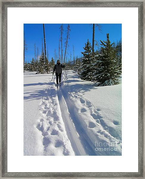 Cross Country Yellowstone Framed Print
