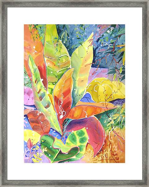 Croton Ll Framed Print