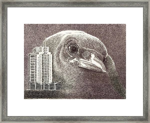 Crow Over Casino Windsor Framed Print