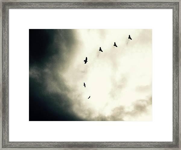 Crows On Christmas Eve 1 Framed Print