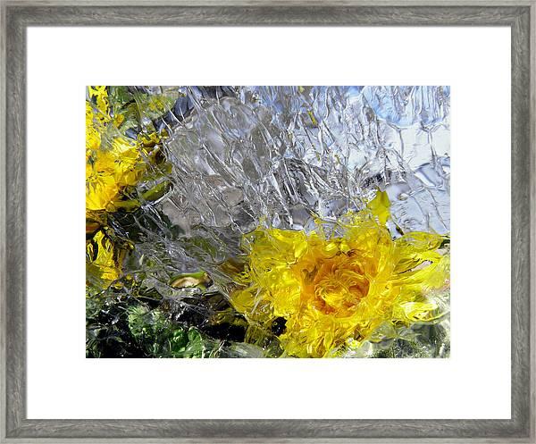 Crystal Flowers Framed Print