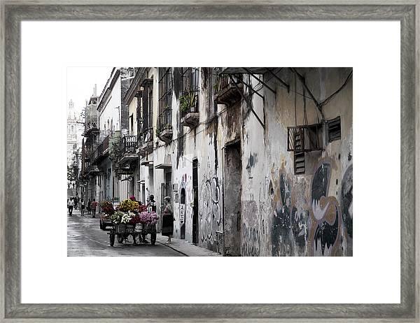 Cuban Flower Vendor Framed Print