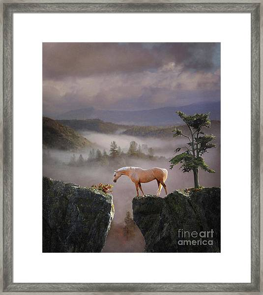 Framed Print featuring the photograph Curiosity by Melinda Hughes-Berland