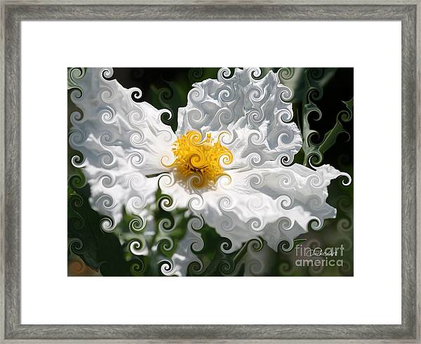 Curlicue Fantasy Bloom Framed Print