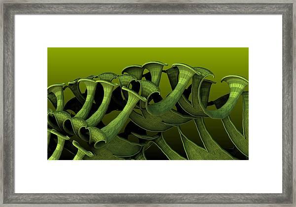 Curling Up Framed Print