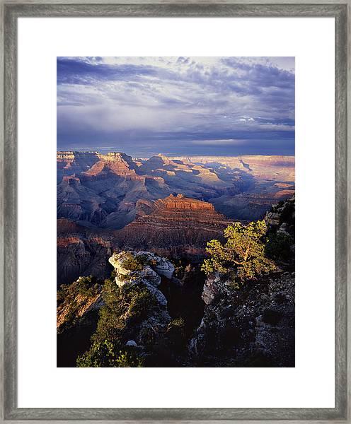 Curtain Call Framed Print