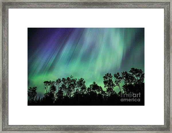 Curtain Of Lights Framed Print