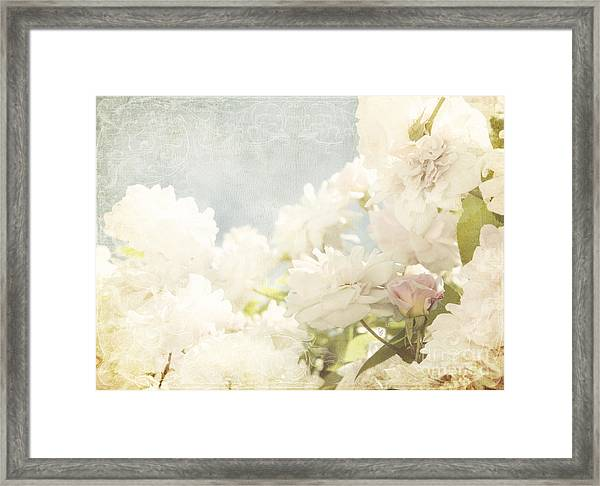Curtains And Fountains Of Roses Framed Print