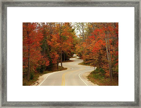 Curvy Fall Framed Print