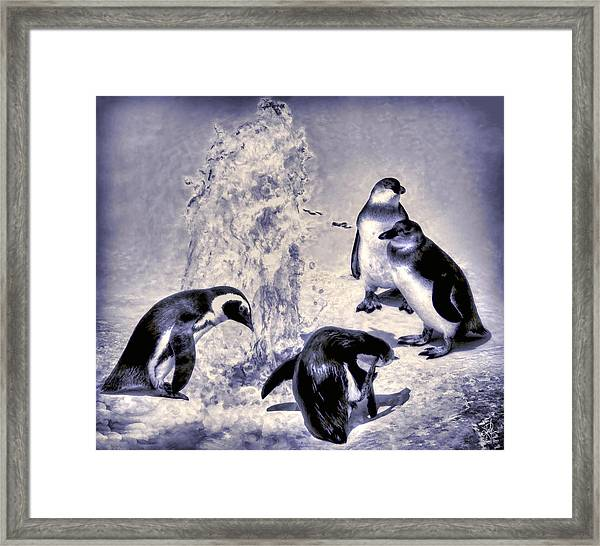 Cute Penguins Framed Print