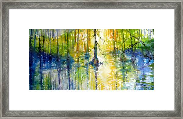 Cypress Bayou Wetlands Framed Print