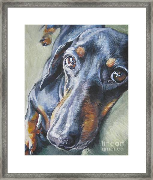 Dachshund Black And Tan Framed Print