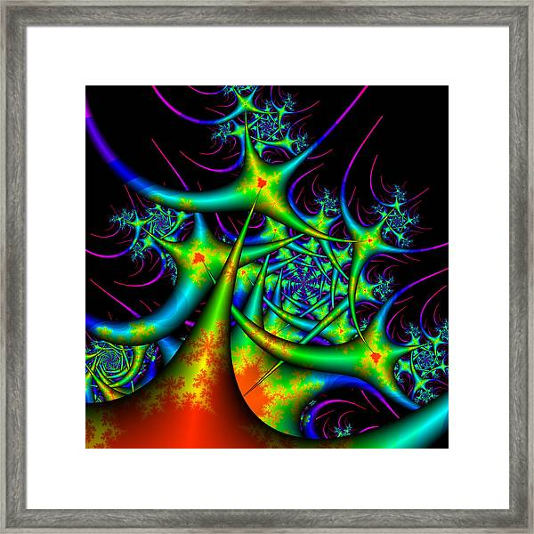 Dactimorse Framed Print