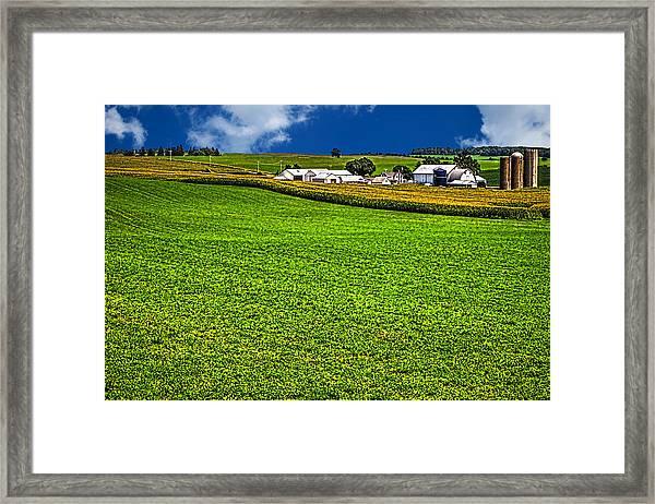 Dairy Farm Dane County Wisconsin Framed Print