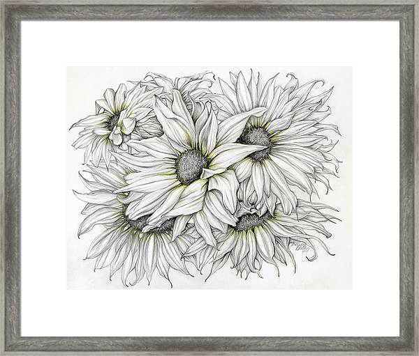 Sunflowers Pencil Framed Print